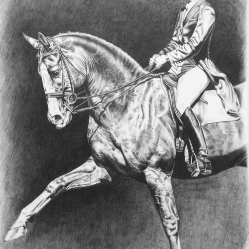 Commissioned equestrian artwork